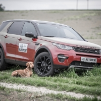 discovery_sport_0022