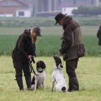 hund13-2