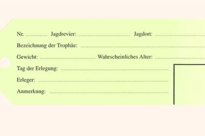 """Trophäenanhänger """"Grün"""""""