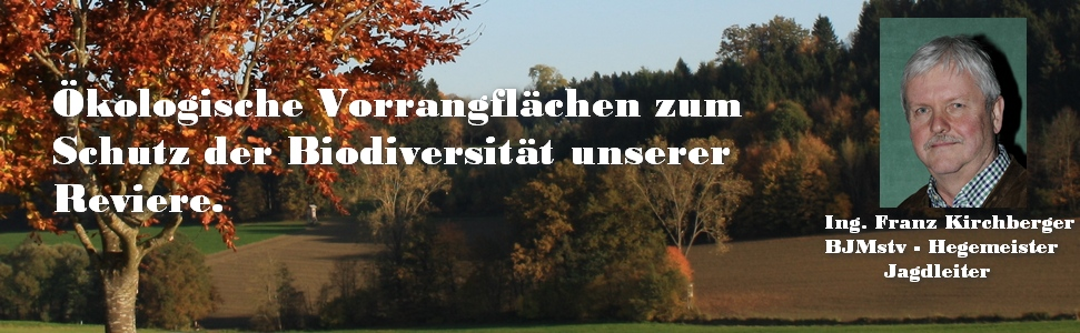 IMG_10-Franz-Kirchberger