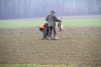 Wildtiermanagement Reimoser_Obermair_Jäger_Hase