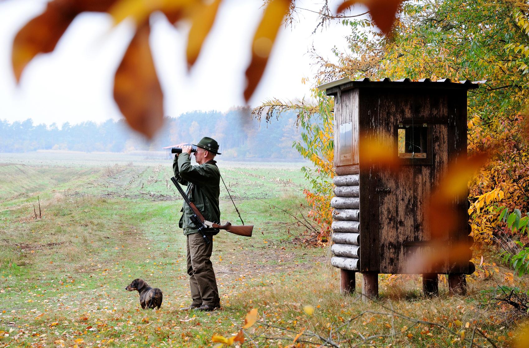 Jagdeinrichtungen (Errichtung, Erhaltung und Haftung)