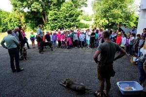 Parcours durch die Natur – Schule und Jagd in der JG-Rutzenham, OÖ LJV