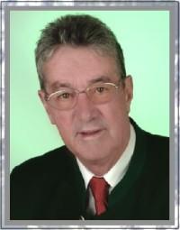 Portrait Ing. Helmuth Leibetseder