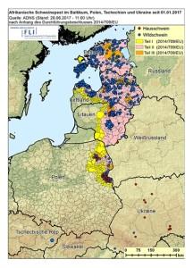 Afrikanische Schweinepest im Baltikum