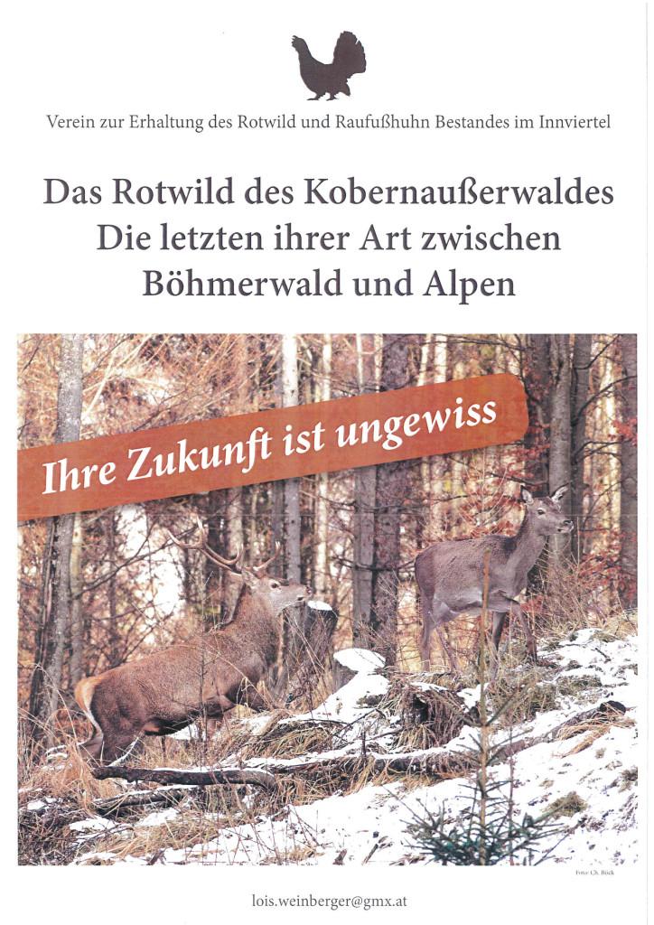 Verein Rettung Rotwild Plakat