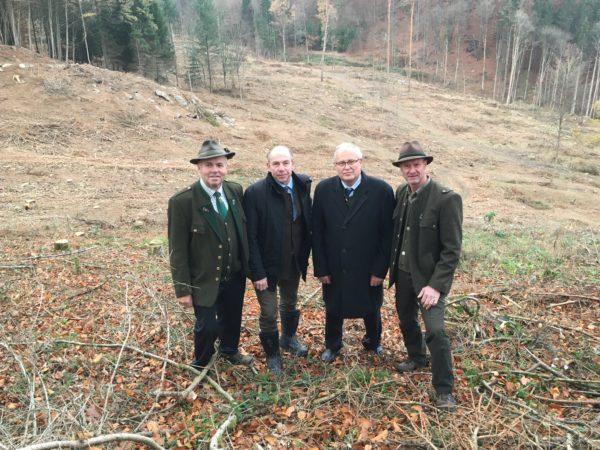 Forstliche und jagdliche Situation in den Schadgebieten