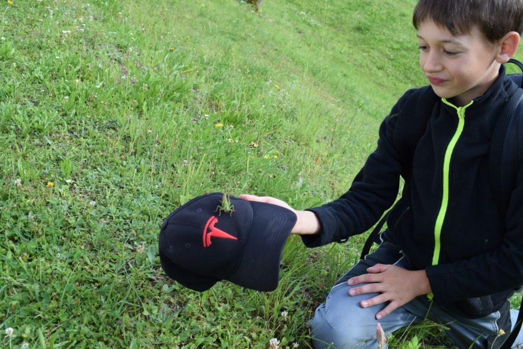 Preisverleihung für Artenschutz und Lebensraum, OÖ LJV