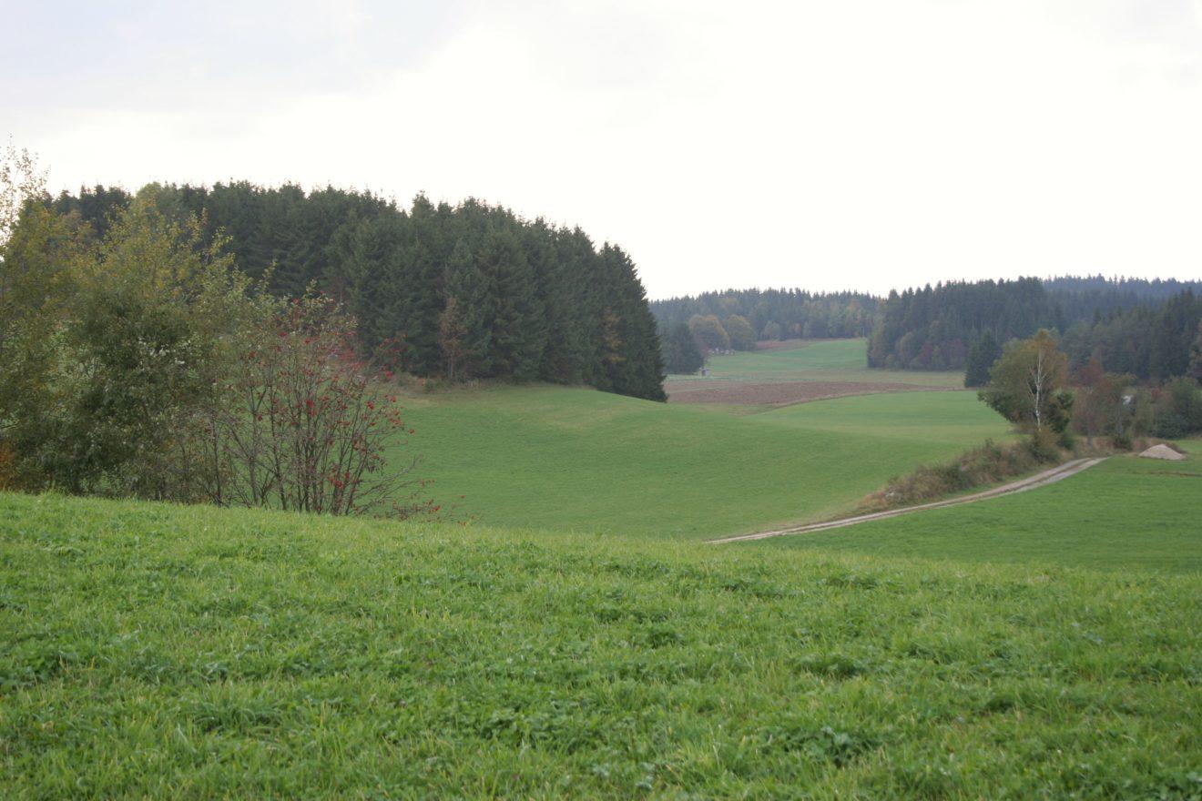 Betretungsrechte und Wegefreiheit im Jagdgebiet