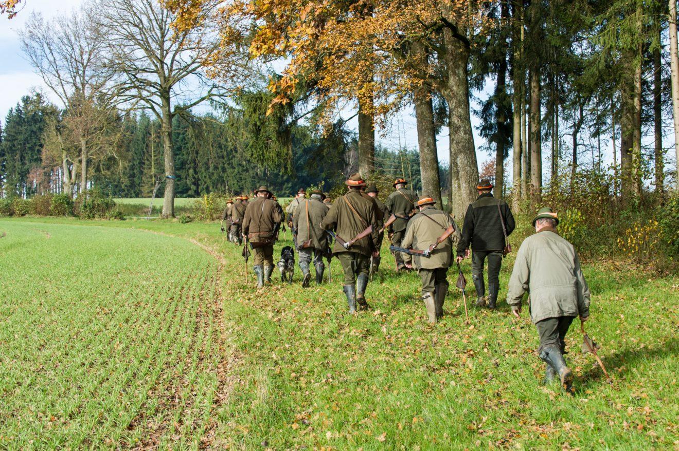 COVID-19-Merkblatt für Jägerinnen und Jäger