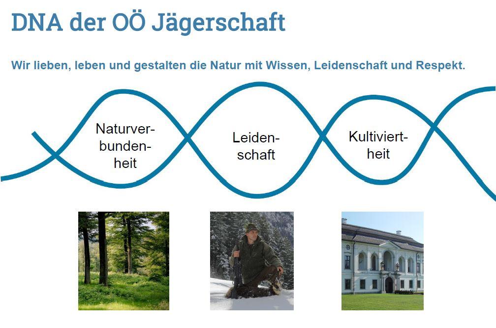 """Imagebild """"Die DNA der OÖ-Jägerschaft"""""""