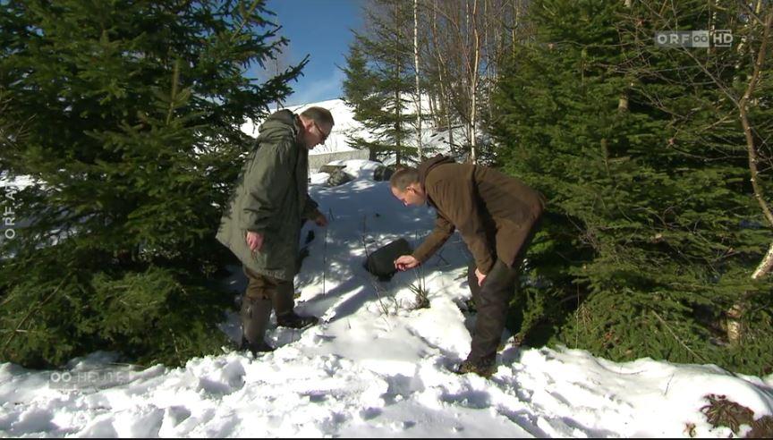 Schutz der Tiere im Winter